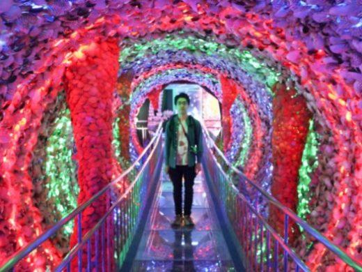 珍スポを継ぎし者! 5500万個の貝が生んだ「竹島ファンタジー館」伝説