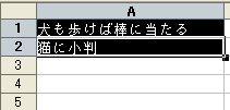 20070406_1468
