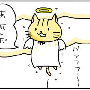 【4コマ漫画】死んだうさねこ