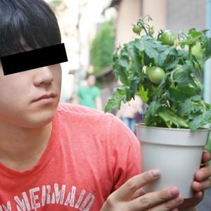 【検証】野菜にストレスを与えるとウマくなるって本当なのか!?