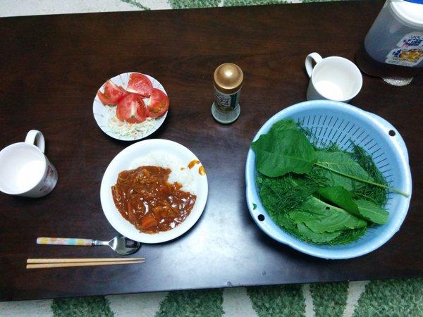 15_晩飯の様子