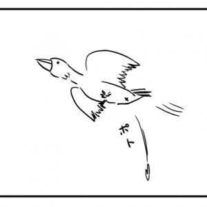 【4コマ漫画】鳥の糞の視点