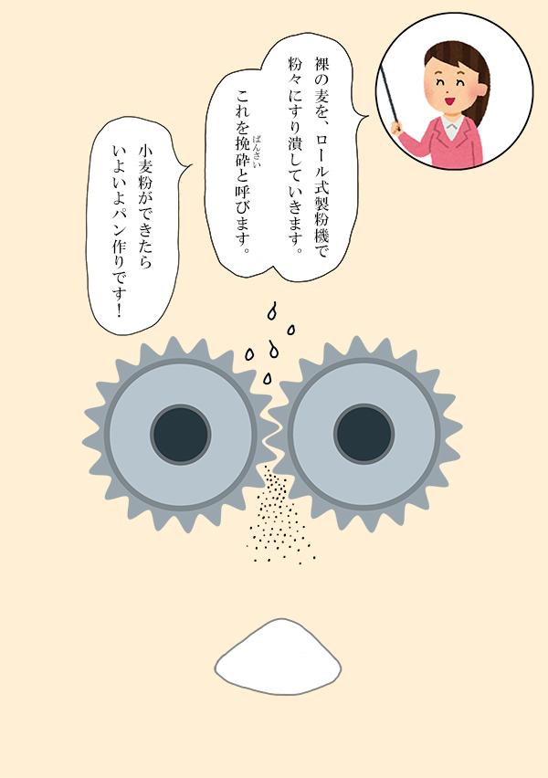 komugi16