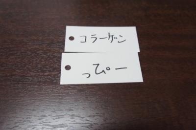 DSC07140_R.JPG