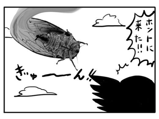 【4コマ漫画】セミの死骸