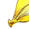【バナナ漫画】バナナ