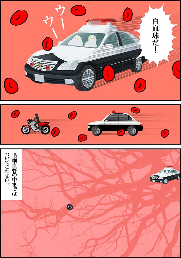 blood06