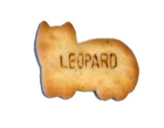 susi012-03leopard