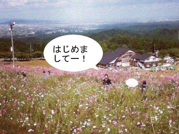 y_kosumosu02